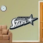 San-Antonio-Silver-Stars-Logo-REALBIG-Fathead-Wall-Graphics-310W-x-27H-0